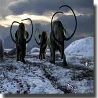 Comment suivre le mode de vie et le régime paléo l'hiver