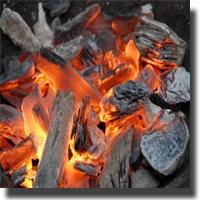 Regardons le régime paléo coté cuisson